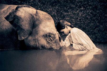 Elephant-girl-pict