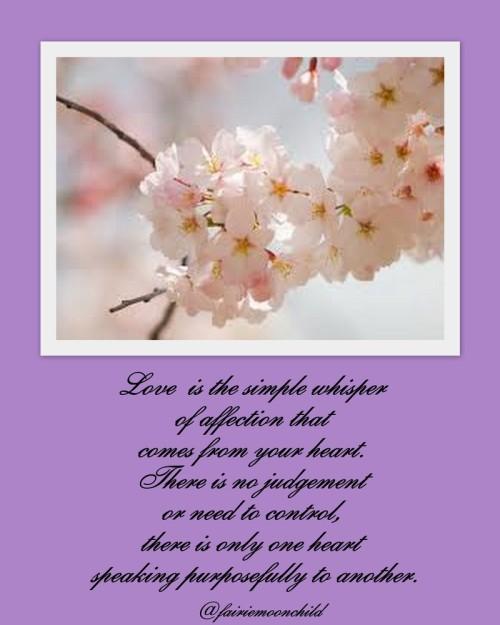 Spring_folder